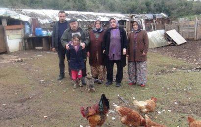 Başakşehir'de Hırsızlar Bir Gecede 110 Keçisini Çaldı