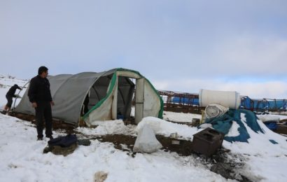 Bayburt'ta Mahsur Kalan 4 Çoban Kurtarıldı