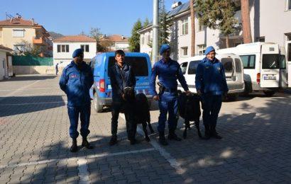 Keçi Hırsızlarına Jandarma Kıskacı