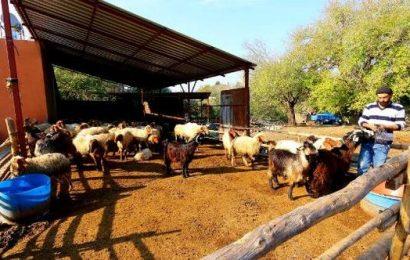 Genç Çiftçilere Ziyaret