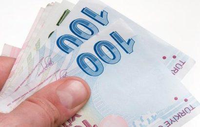 Yüzde 50 hibe desteği… Resmî Gazete 'de yayımlandı: 1 Ocak'ta başlıyor