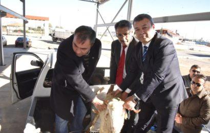 Antalyalı Genç Çiftçiler Koyunlarını Teslim Aldı