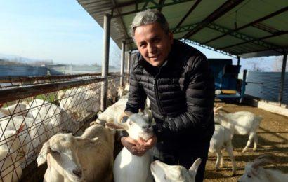 Dondurma Yapımı Merakı Keçi Çiftliği Sahibi Yaptı