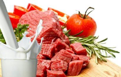 SETBİR'den Süt ve Et Raporu
