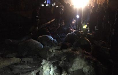 Muş'ta Ahır Çöktü, 130 Küçükbaş Hayvan Telef Oldu