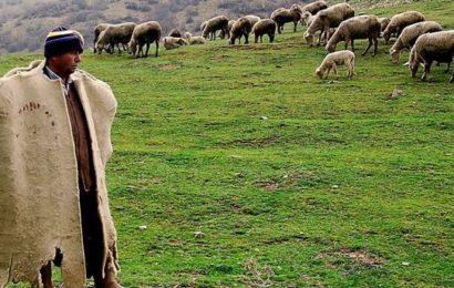 """""""Çoban Olmak Gurur Verici"""""""