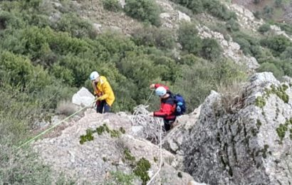 Kayalıkta Mahsur Kalan 13 Keçi Bir Haftadır Kurtarılmayı Bekliyor