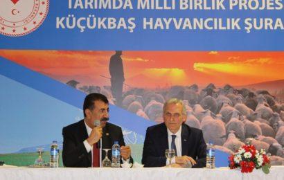 """TÜDKİYEB Başkanı Çelik: """"Aşı Desteği İstiyoruz"""""""